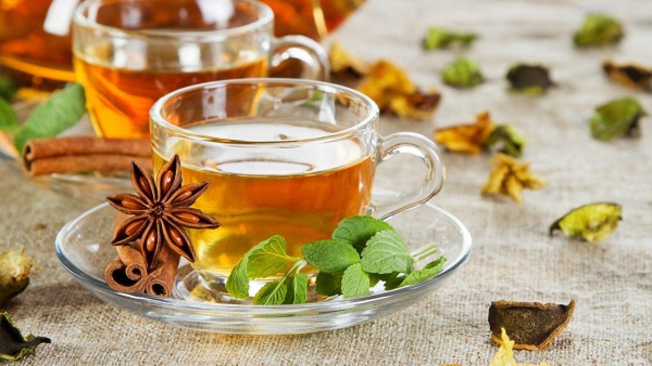 Tổng hợp cách loại trà thanh nhiệt giải độc tốt nhất
